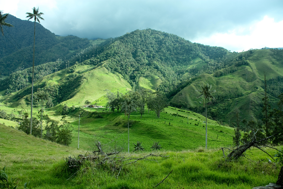 Corcora Valley, Colombia